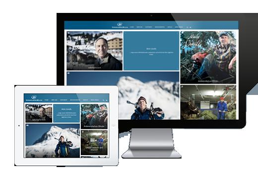 MASSIVE ART - VMilch - responsive Web-Design