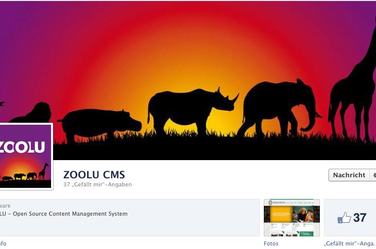 MASSIVE ART Newsletter: Facebook-Timeline für Unternehmen